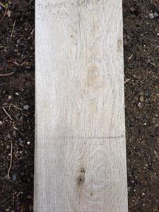 Aged Silver Cottage Oak
